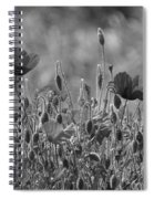 Colour Blind Poppies 2 Spiral Notebook