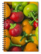 Colourful Mini Bell Peppers Spiral Notebook