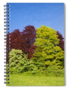 Colourful Trees Spiral Notebook
