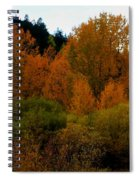 Colours In A Season Spiral Notebook