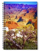 Colours Within The Canyon Spiral Notebook