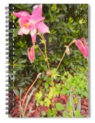 Columbine Beauty Spiral Notebook