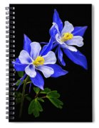 Columbine Duet Spiral Notebook