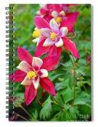 Columbine Flower Spiral Notebook