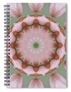 Columbine Kaleidoscope Spiral Notebook