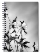 Columbines In Black And White Spiral Notebook