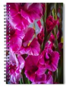 Columns Of Colour Spiral Notebook