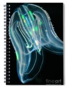 Comb Jelly Spiral Notebook
