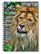 Come A Lil Closer...mmmmm... Spiral Notebook