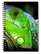 Come A Little Closer Spiral Notebook