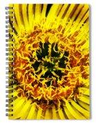 Come A Little Closer  Spiral Notebook