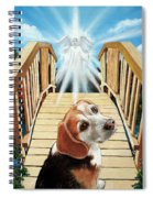 Come Walk With Me Over The Rainbow Bridge Spiral Notebook