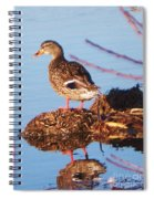 Comedian Duck Spiral Notebook