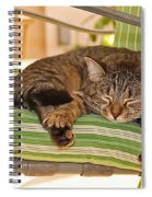 Comfy Kitty Spiral Notebook