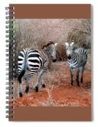 Coming And Going Spiral Notebook