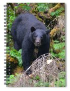 Coming Downhill Spiral Notebook