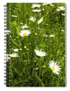 Coming Up Daisy's Spiral Notebook