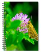 Common Banded Skipper Spiral Notebook