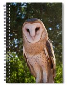 Common Barn Owl 1 Spiral Notebook