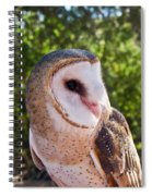 Common Barn Owl 10 Spiral Notebook