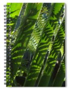 Common Beauty Spiral Notebook