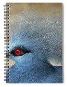 Common Crowned Pigeon Spiral Notebook