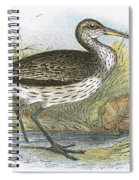 Common Curlew Spiral Notebook