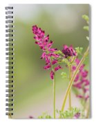 Common Fumitory Spiral Notebook
