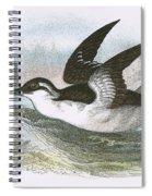 Common Guillemot Spiral Notebook