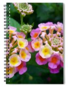 Common Lantana Flower Spiral Notebook