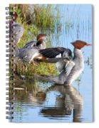 Common Merganser Family 2a Spiral Notebook
