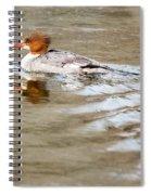 Common Merganser Hen Spiral Notebook