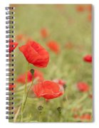Common Poppies Spiral Notebook