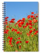Common Poppy Flowers  Spiral Notebook