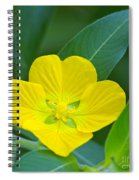 Common Primrose Willow 1 Spiral Notebook