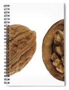 Common Walnut 7 Spiral Notebook