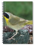 Common Yellowthroat Geothlypis Trichas Spiral Notebook