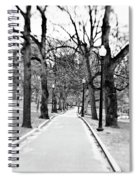 Commons Park Pathway Spiral Notebook