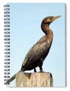 Comorant And Blue Sky Spiral Notebook