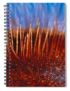 Compound Eye Of A Bee Spiral Notebook