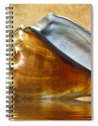 Conch 2 Spiral Notebook