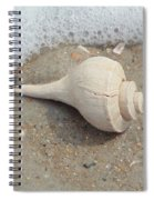 Conch Shell Vacation Spiral Notebook