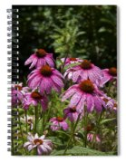 Cone Flower And Bee Spiral Notebook