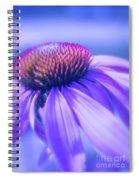 Cone Flower In Pastels  Spiral Notebook