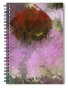 Cone Of Beauty Art Spiral Notebook