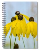 Coneflower And Bee 2  Spiral Notebook