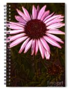 Coneflower And Dusty Miller Hdr Spiral Notebook