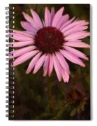 Coneflower And Dusty Miller Spiral Notebook