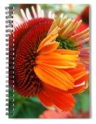 Coneflower Bloom Spiral Notebook