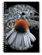 Coneflower Gold Spiral Notebook